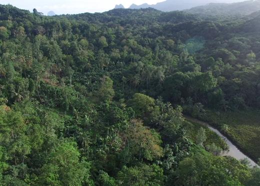 Drones realizam mapeamento 3D na Ilha do Príncipe. Confira!