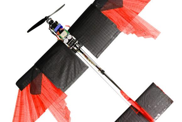 Cientistas criam drone com asas móveis que voa como um pássaro