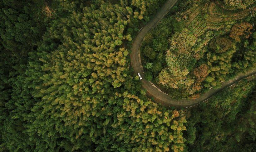 Curso Drones para Aerolevantamentos no DroneShow e MundoGEO Connect 100% Online em setembro