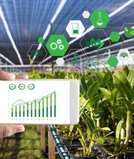 Artigo: Como deverão ser as fazendas em 2050?
