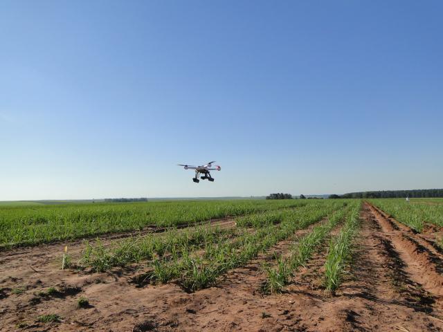 Novo curso ensinará a utilizar drones na agricultura e como atuar profissionalmente
