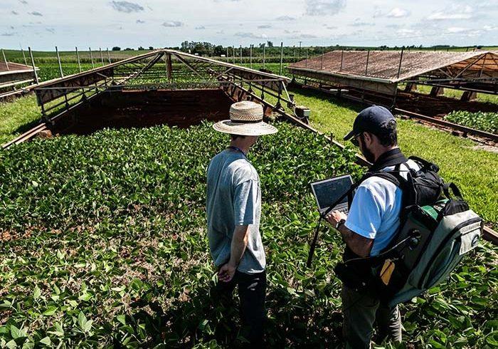 Drones e satélites auxiliam monitoramento de lavouras e pastagens