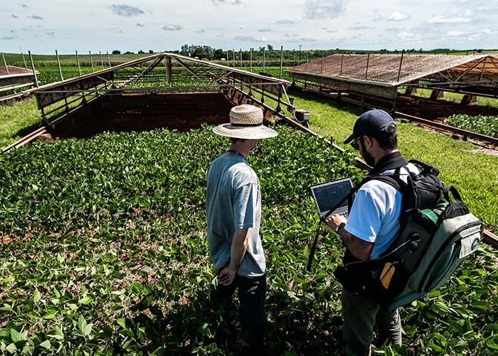 Drones e satelites no monitoramento de lavouras e pastagens no parana
