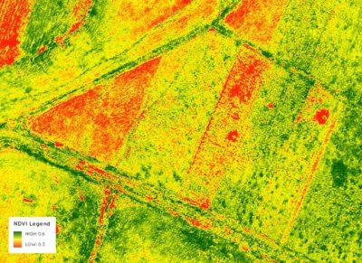 NDVI a partir de dados de drone