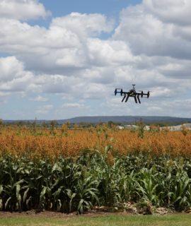 Trimble integra iniciativa para trazer conectividade ao agronegócio