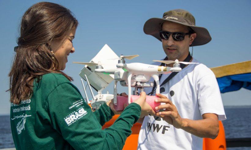 Drones são usados para estimativa populacional de botos amazônicos. Confira