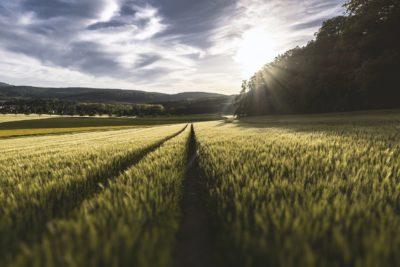 comisssao de agricultura de precisao