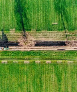 Replay: Drones para Mapeamento e Meio Ambiente – Desafios e Oportunidades