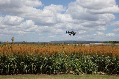 drones agricultura de precisao seguranca da informacao