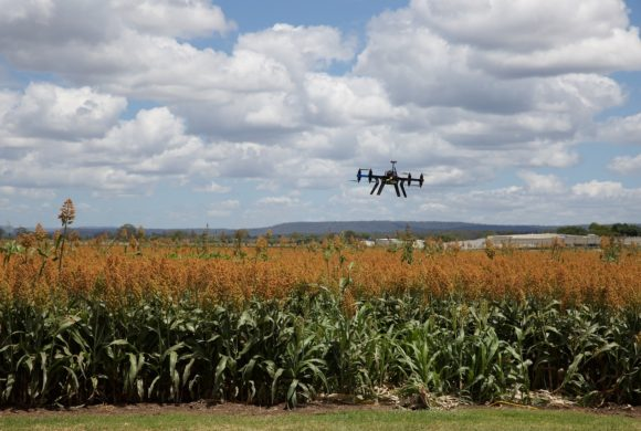 Artigo: Agricultura de Precisão e Segurança da Informação