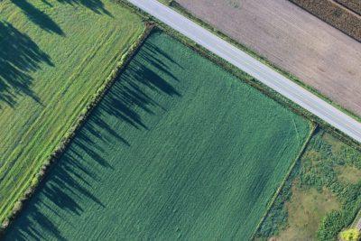 drones na agricultura e florestas