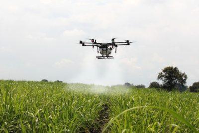 drones na cana de acucar