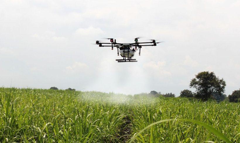 Agricultura de precisão é destaque em simpósio de cana-de-açúcar