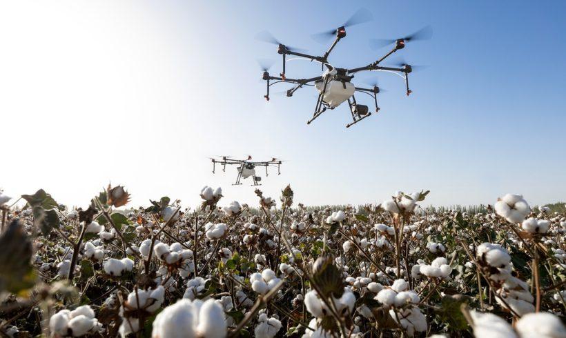 Sicredi apoia programa de startups com foco no Agro