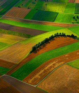 Cursos básico+avançado de Drones para Agricultura no DroneShow e MundoGEO Connect 100% Online em setembro