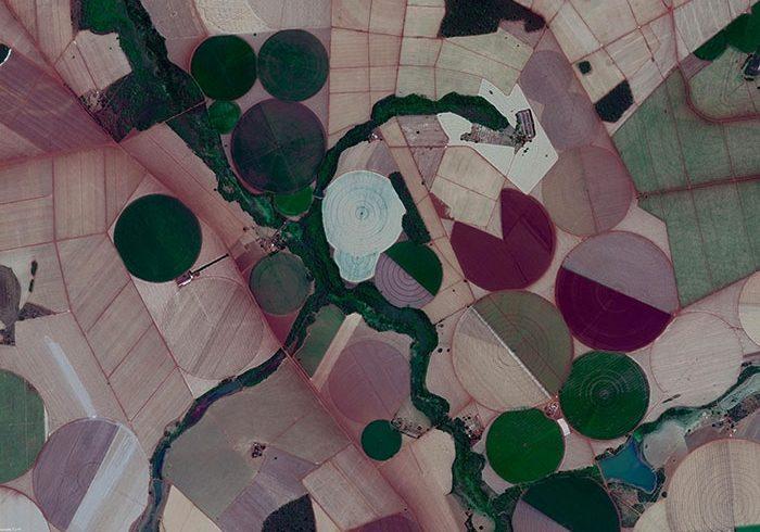 Estudo revela novo perfil da agricultura no estado de São Paulo