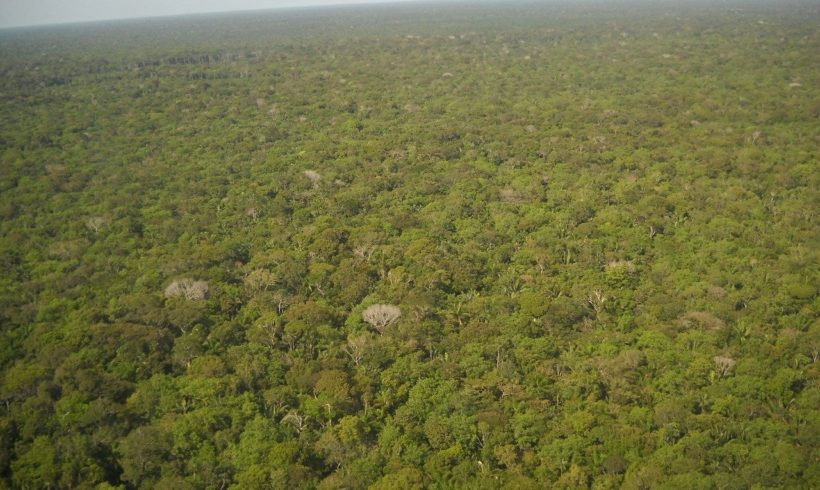Tribo indígena usa Drones para monitorar a floresta amazônica