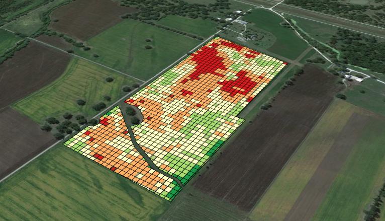 Drone dá mais agilidade a pesquisas para culturas agroenergéticas