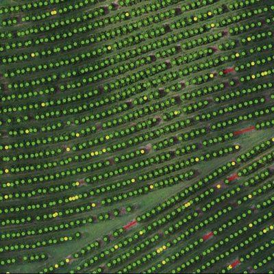 mapeamento e processamento de dados de drones
