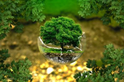 novo-canal-ambiental-no-mundogeo