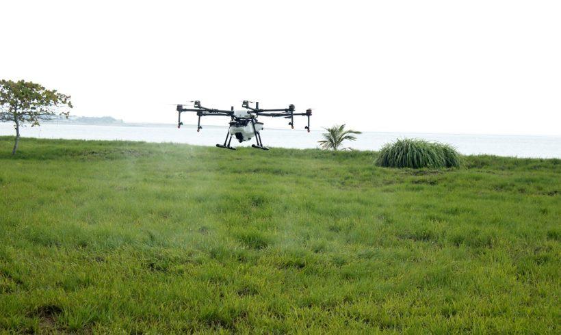 Rede de inovação tecnológica do agronegócio terá investimento da Faperj
