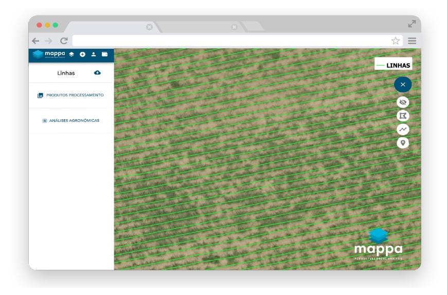 processamento de imagens agronomicas na mappa