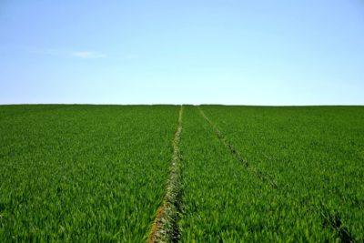 startups de agronegocio