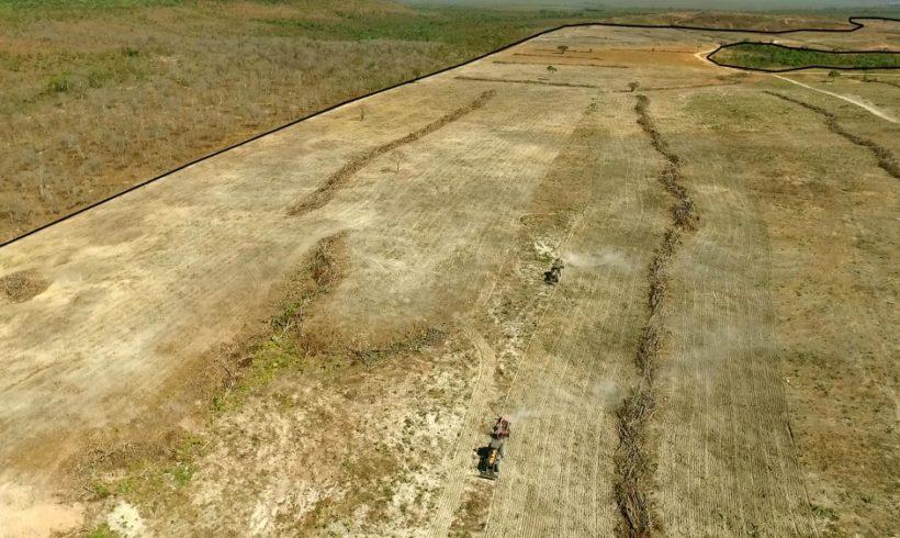 Drones são usados para validar dados de desmatamento gerados pelo Inpe